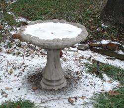 Icy_birdbath_1